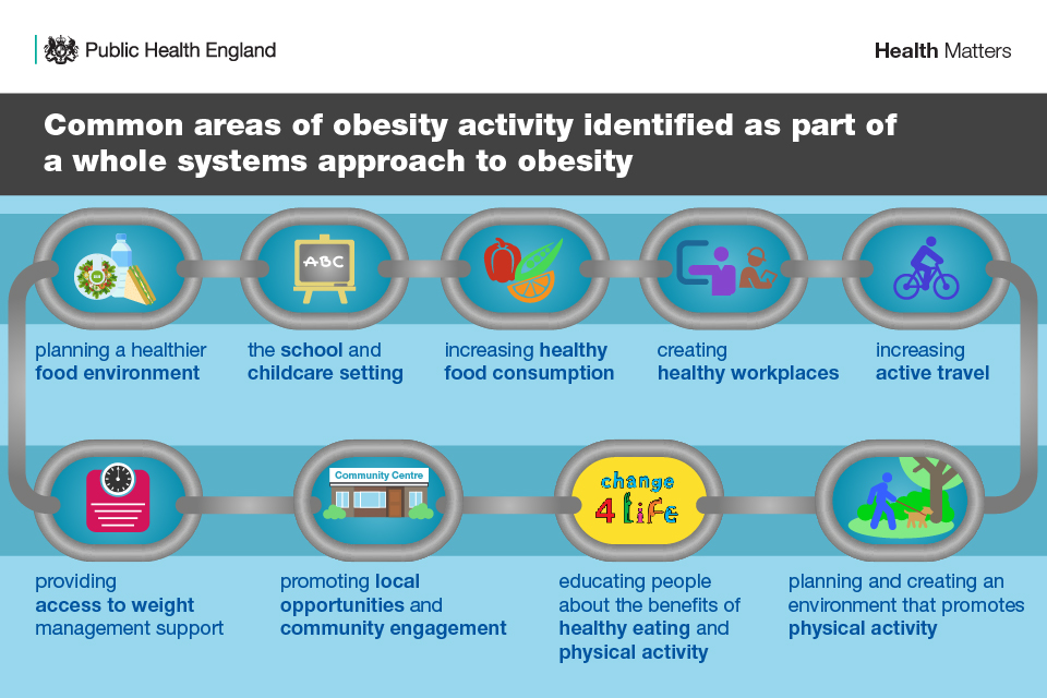 Common areas of obesity activity identified as part of a whole systems approach to obesity, including planning a healthier food environment, the school and childcare setting, increasing healthy food consumption, and creating healthy workplaces.