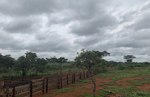 farmland in angola
