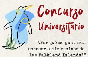Arte Falklands