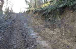 Track at Newtondale Site of Special Scientific Interest