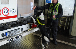 Border Force detection dogs helped discover the stowaways
