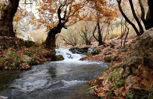 Image depicts a river