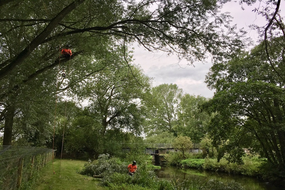 Specialist tree surgeons made broken branches safe and allowed daylight into the channel.