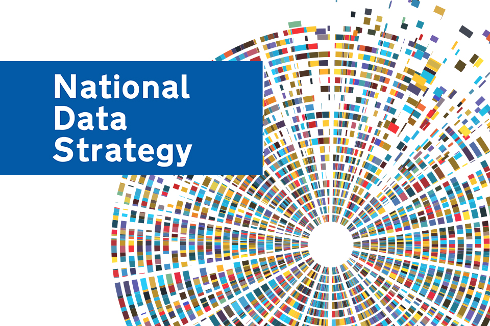 Uk Government logo for National Data Strategy