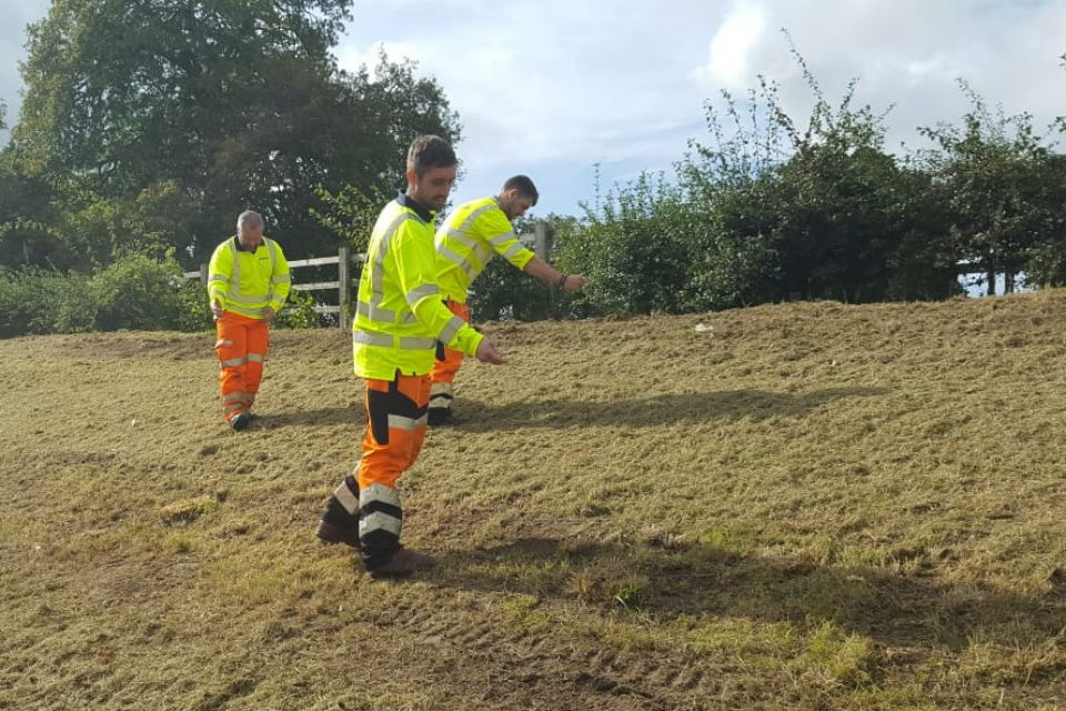 Highways England staff planting poppies