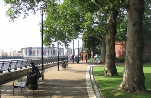 Trees on Embankment