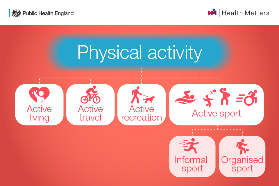 Physical activity includes: active living, active travel, active recreation, active sport (informal sport and organised sport)