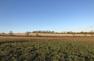 Green field backing onto woodland and hedgerows