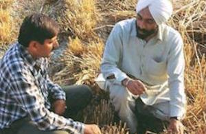 Agronomist talking to farmer who has adopted zero-tillage.
