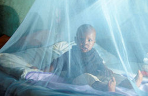 Insecticide-treated bed net.