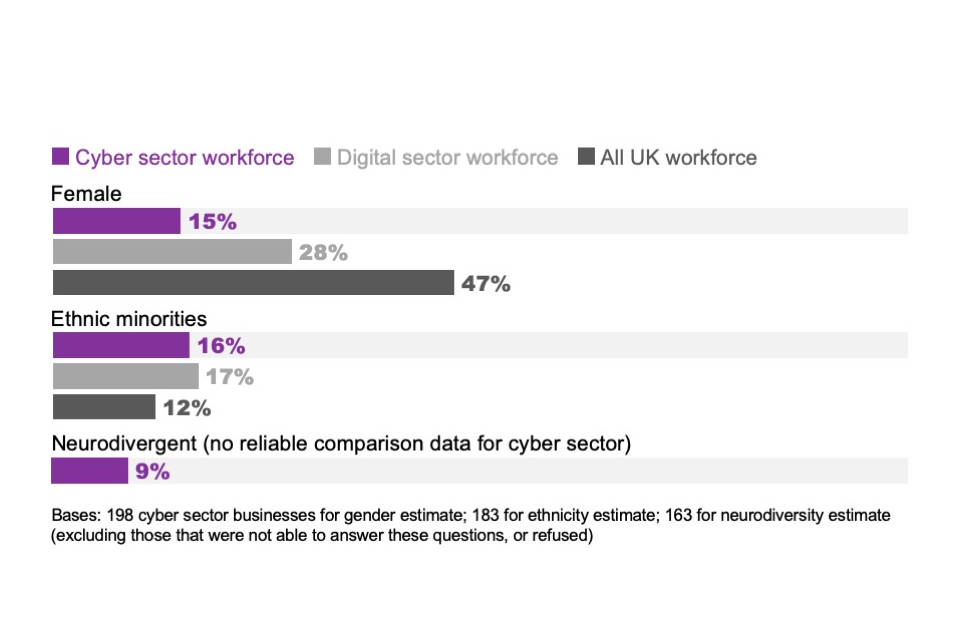 Figure 3.1: Percentage of cyber sector workforce that come under the following diverse groups