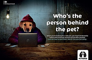 Petfished: Who's the person behind the pet? Image of a hooded figure wearing a Labrador face mask. The individual is hiding behind a computer screen.