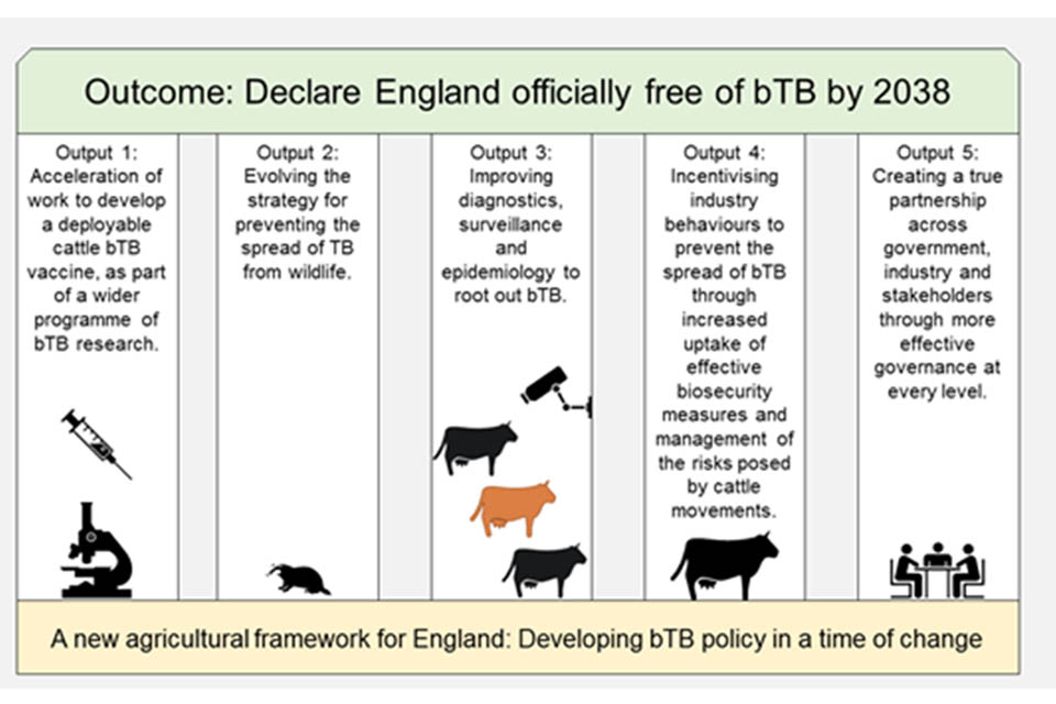 An image showing the five outputs contributing to the outcome of declaring England officially free of bovine TB by 2038 against a background of a new agricultural framework.