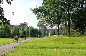 People walking through green space.