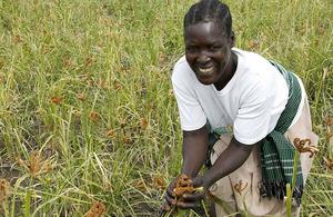 Photograph of a farmer in Uganda
