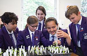 Children taking part in rocket seeds experiment