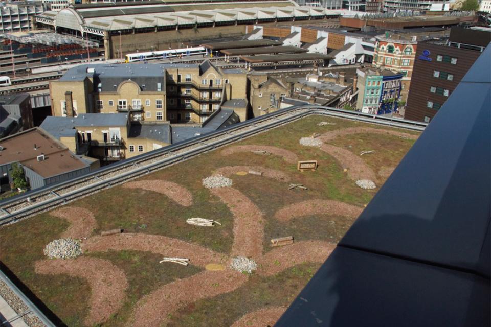Green roof seminar