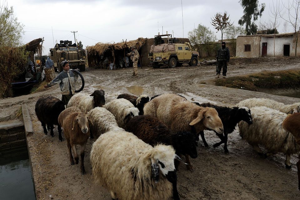 A young Afghan farmer ushers his sheep past a checkpoint