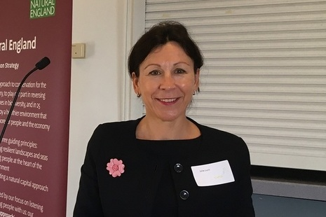Julie Lunt