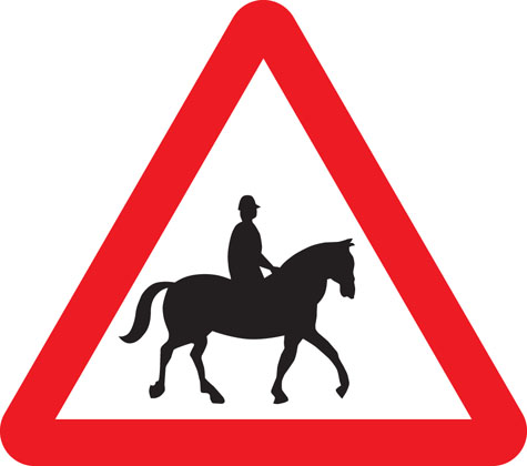 Accompanied horses or ponies