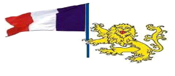 French flag with lion stretched - Example 6