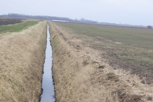 The polluted watercourse