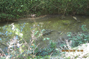 A picture of Grendon Brook