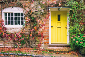 Stone house front with a yellow door and red climber around window