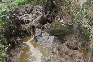 A brook overflowing with slurry