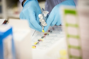 Close up of hands in surgical gloves putting pills into boxes