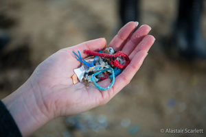 Discarded pieces of plastic waste held in someone's hand